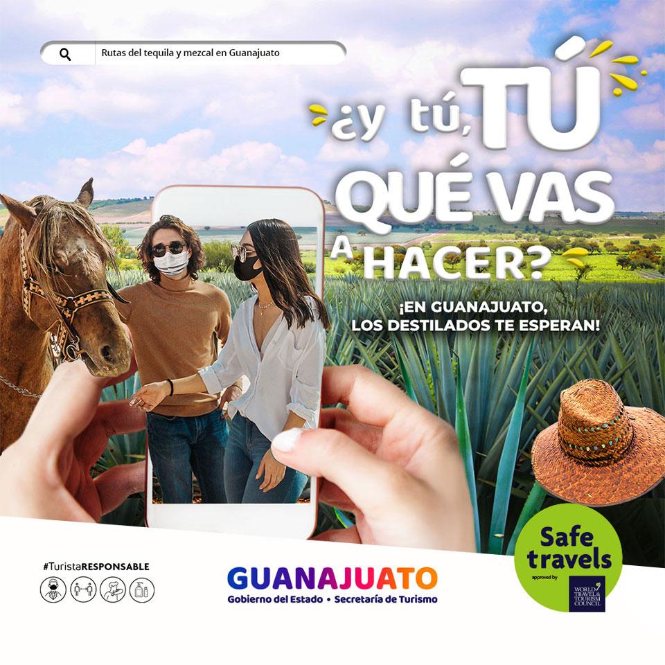 ¿y tú, TÚ QUÉ VAS A HACER? ¡Vamos a los destilados de Agave en Guanajuato!