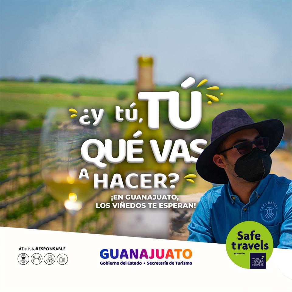 ¿y tú, TÚ QUÉ VAS A HACER? ¡Vamos a los Viñedos en Guanajuato!