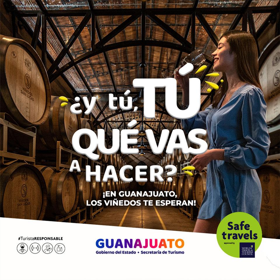 ¿y tú, TÚ QUÉ VAS A HACER? ¡Vamos a las barricadas en Guanajuato!